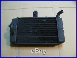 Radiateur d'eau gauche pour Honda 750 Africa twin XRV RD07